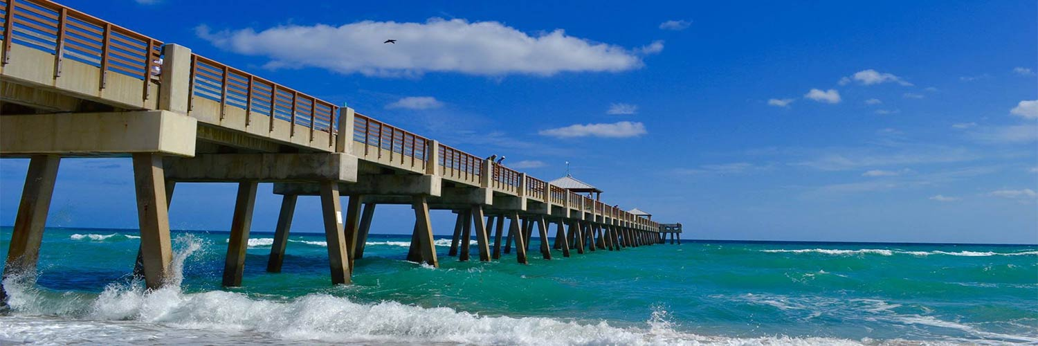 American Airlines Find Cheap Flights To West Palm Beach