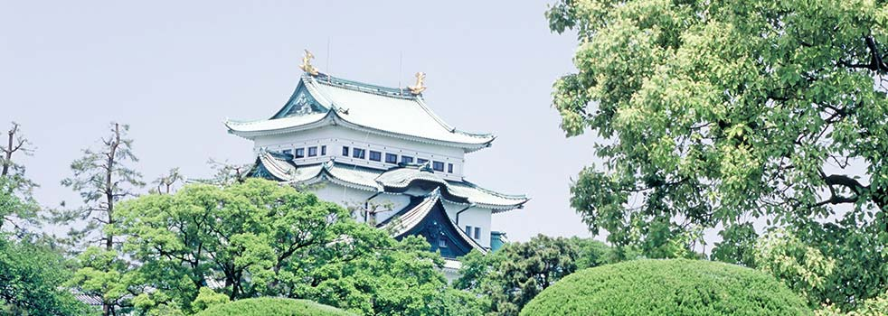 Book the Best Flights to Nagoya (NGO)