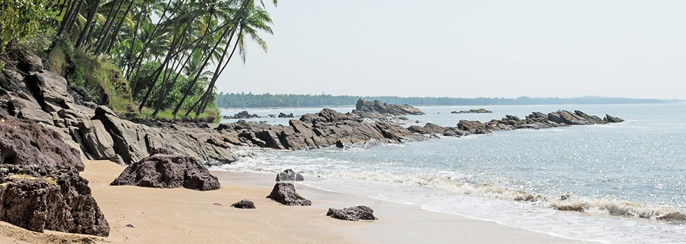 Book the Best Flights to Goa (GOI)