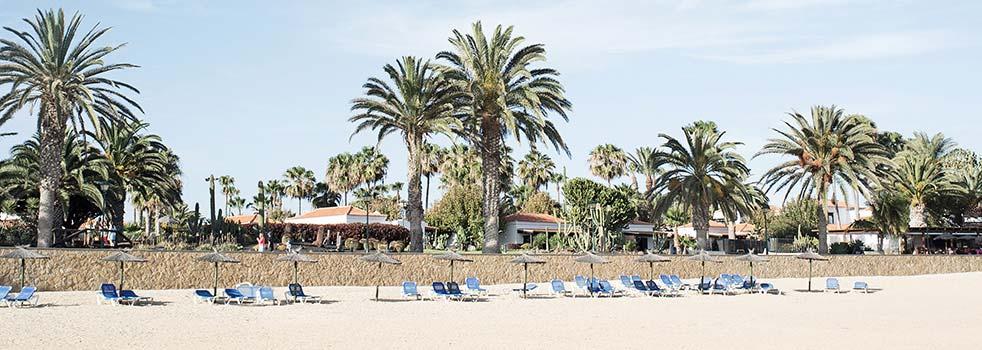 Book the Best Flights to Fuerteventura (FUE)