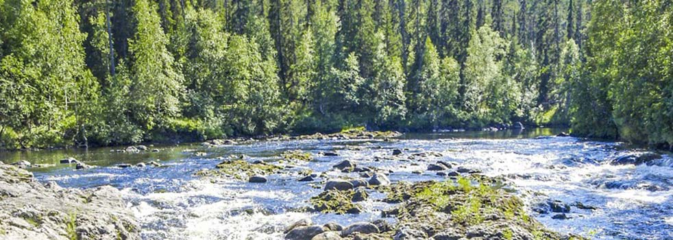 Book the Best Flights to Kuusamo (KAO)