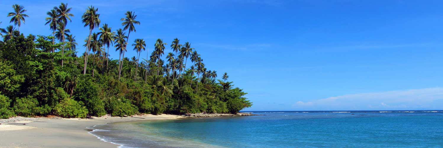 Find Fiji Airways Flights from Sydney (SYD) to Honiara (HIR)