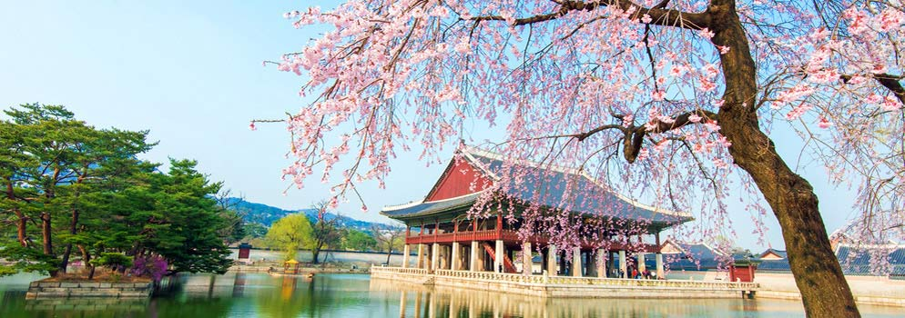 Compare Vancouver to Seoul (YVR - ICN) Deals