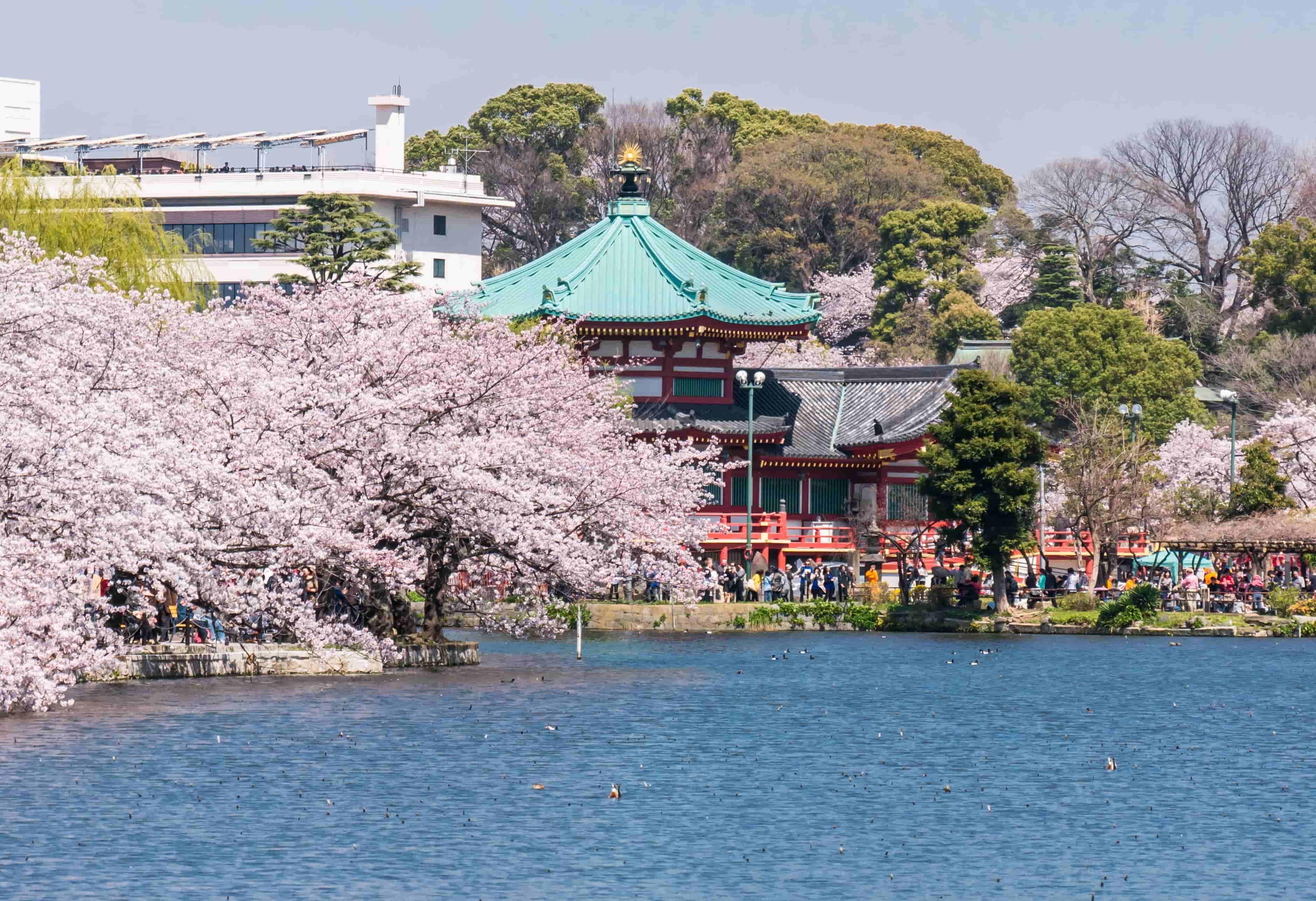 Ueno Park Destination