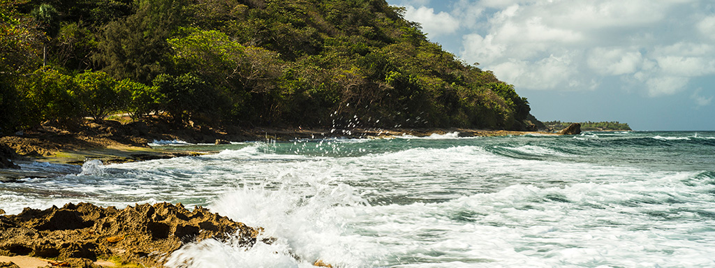 Ultra Low Fare Flights from Fort Lauderdale (FLL) to Aguadilla (BQN) with Spirit