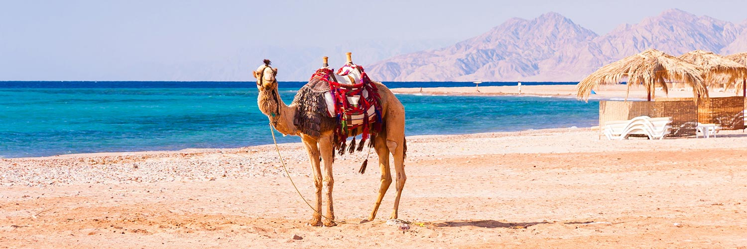 Flights from Sweden to Hurghada (HRG) from 182 GBP