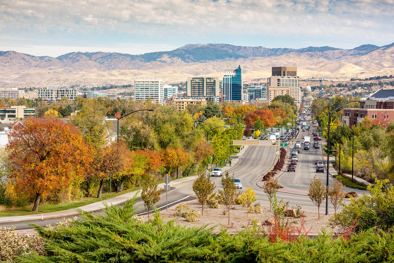 Tree-lined streets leading in and out of downtown Boise