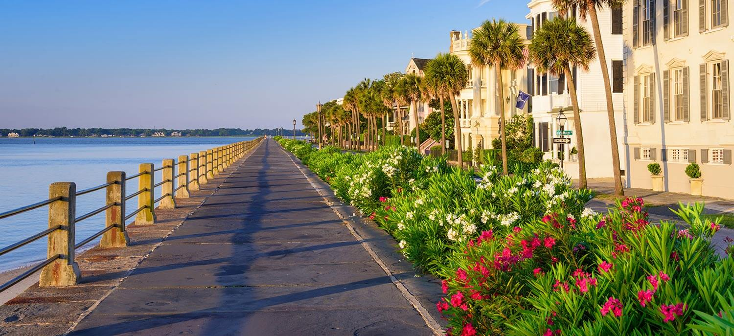 The battery of Charleston, SC, separating blue water from lush foliage and a row of homes