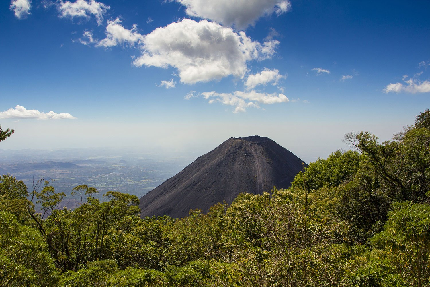 Volcano surrounded by tress in El Salvador