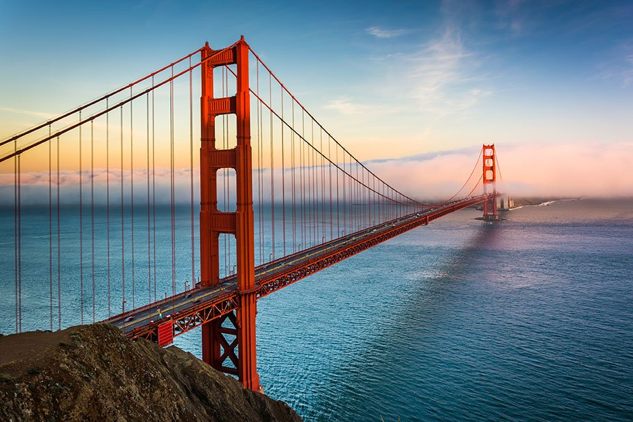 Muir Woods, Giant Redwoods, and Sausalito Half-Day Trip. After crossing the impressive Golden Gate Bridge, you'll stop for a view of San Francisco from Vista Point before driving through the coastal mountains to Muir Woods (admission included).