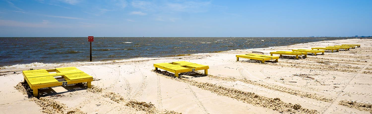 Beach in Gulfport with yellow lounge chairs along the shoreline