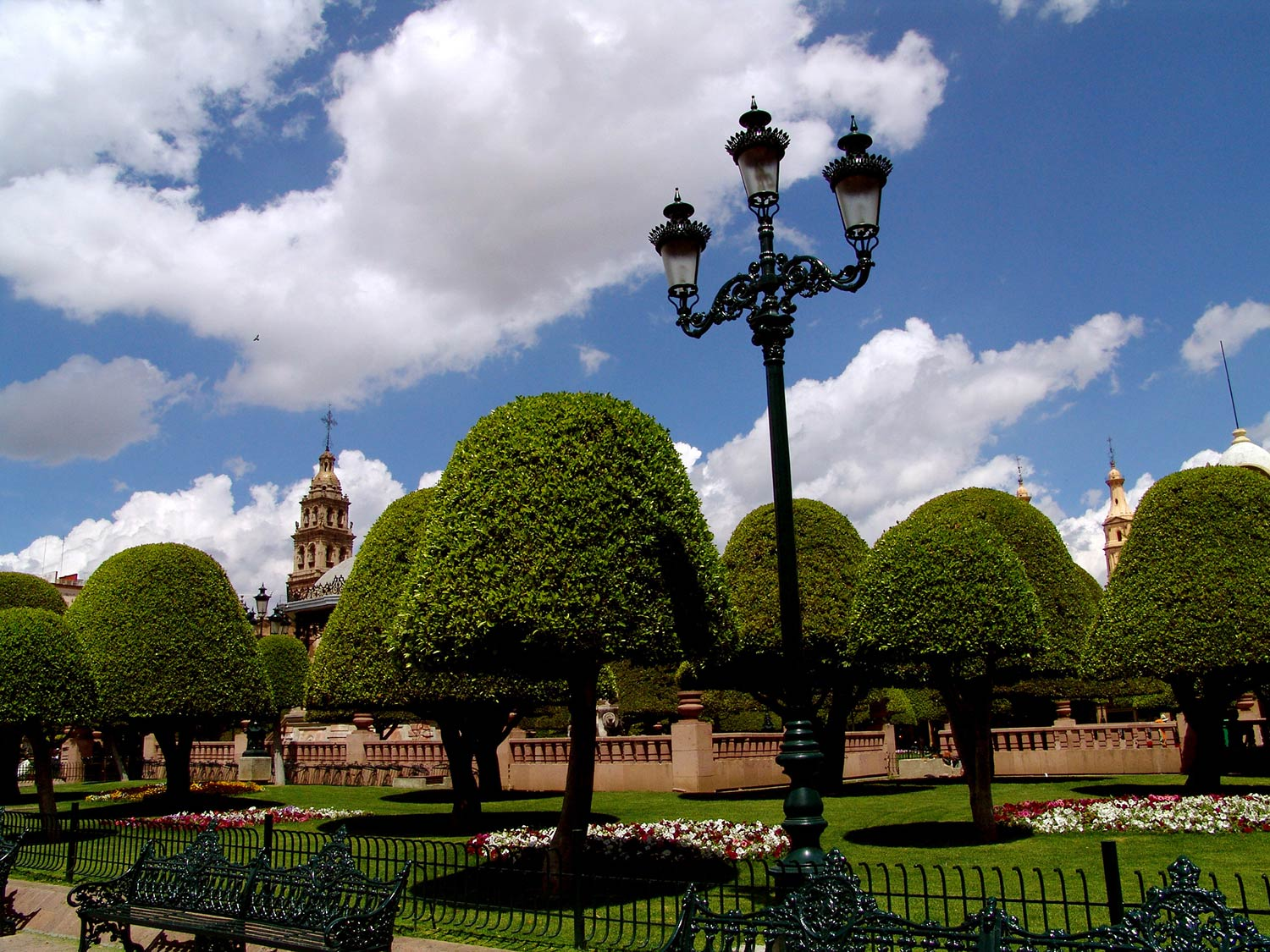 One black lamppost stands out against a line of green trees on a sunny day in Leon