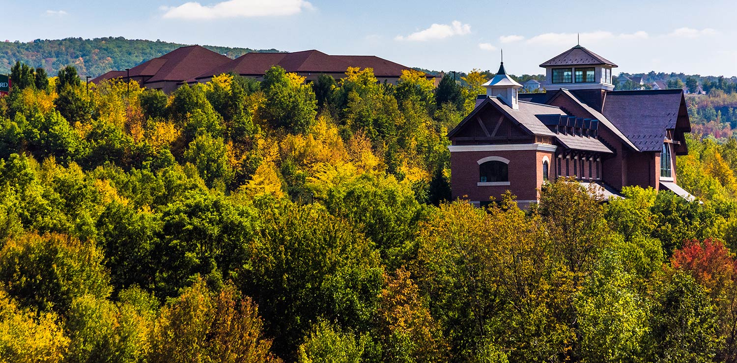 A brown building rises above a thick forest of trees in Scranton