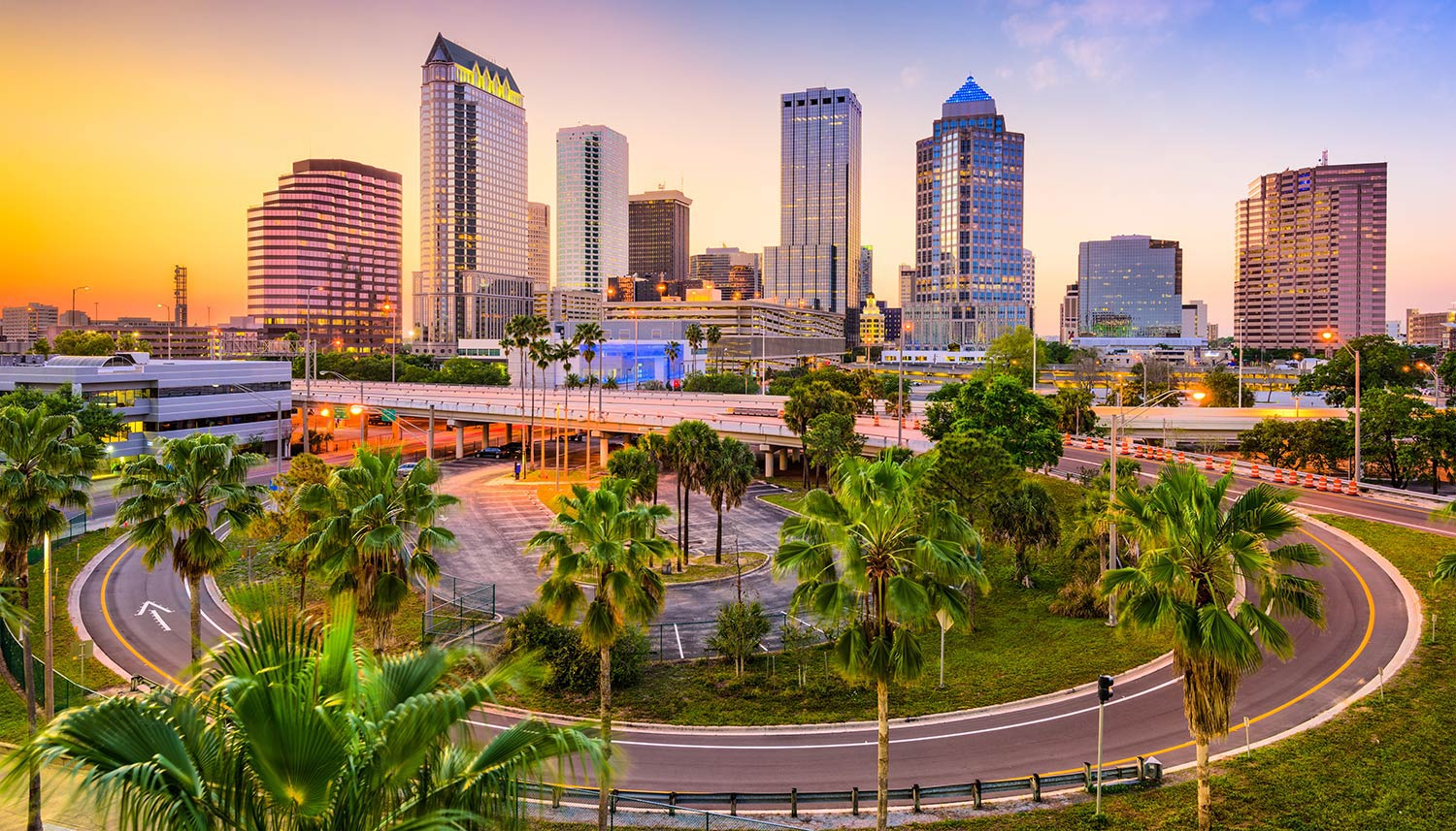 A curbed road surrounded by palm trees in downtown Tampa at sunrise