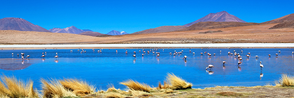 Find Spain - Bolivia Cheap Flights